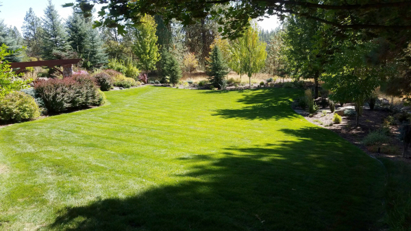 This well maintained back yard is a great example of our Total Solution.
